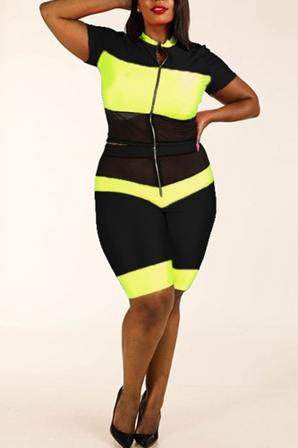 Color Blocked Zippered Nylon Spandex Top & Biker Shorts Set