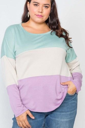 Plus Size Colorblock Soft Knit Top