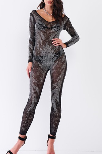 Black Rhinestone Embroidery Sheer Mesh Long Sleeve Bodycon Jumpsuit