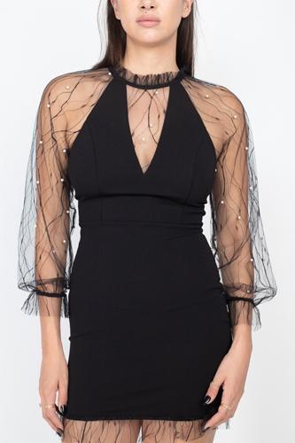 Pearl Trim Mesh Bodycon Dress