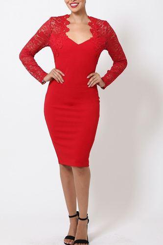 Crochet-lace Bodycon Dress