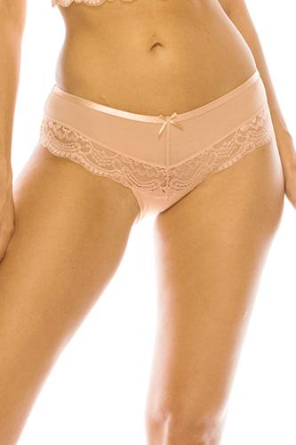 Mesh Bikini Underwear W/ Lace Trim